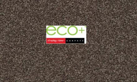 Eco+ Diamond Point